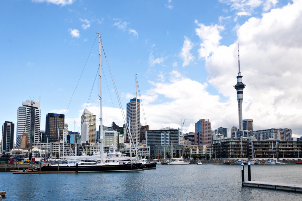 auckland harbour summer